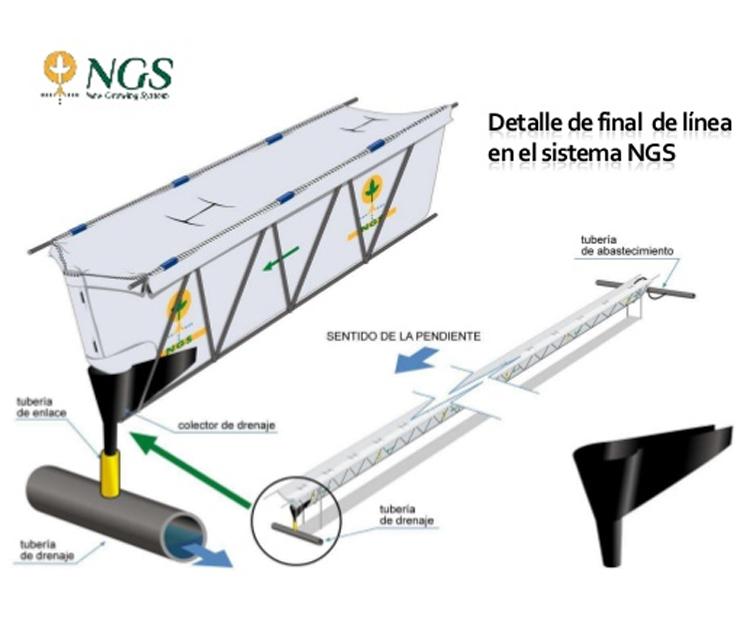¿Conoces el Sistema Hidropónico NGS?